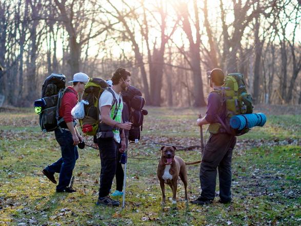 Grupo de mochileros y su perro listos para acampar