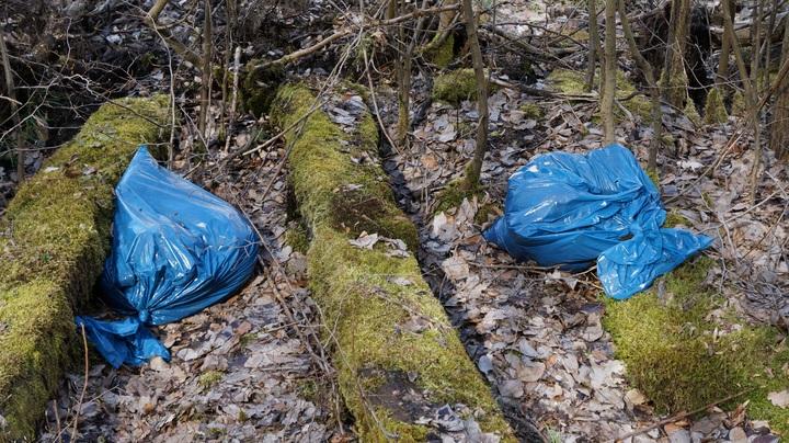 Bolsas plásticas con desechos