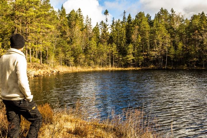 Hombre mirando una laguna en el bosque